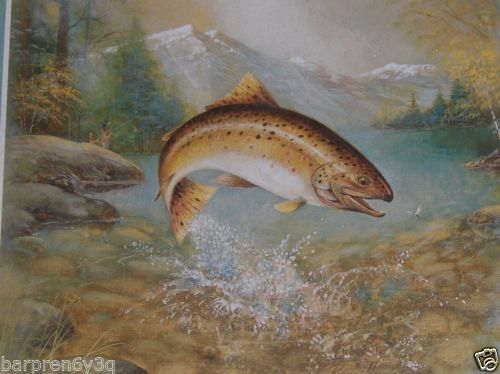 Ruane Manning Framed Art Print Jumping Brown Trout Lake ...