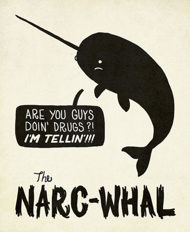 the narc-whal