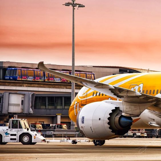 SCOOT 787-8 #instagramaviation #instaplanes #instaaviation #instaplane #787に惹かれて #eu_spotters #epic_aviation #EXCELLENTAVIATION #avgeek #airline #airport #aircraft #airplane #aviation #aviation4u #aviationlovers #planesdub #tokyocameraclub #scoot #787dreamliner #rollsroyce #fryscoot #canon #canon_cps #boeing #boeing787 #boeing787lovers #megaplane #飛行機 #航空機 by yutaka_okamoto