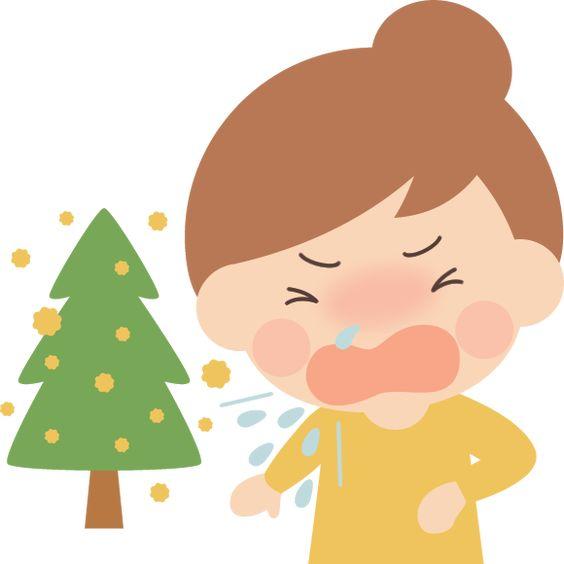 花粉症になってくしゃみをする女性とスギ花粉のイラスト