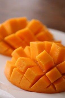 Mangue <3