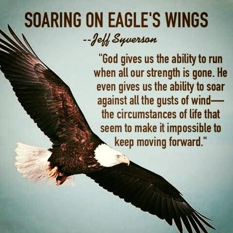 Soaring On Eagle S Wings Sept 22 Eagles Quotes Quotes Quotes To Live By