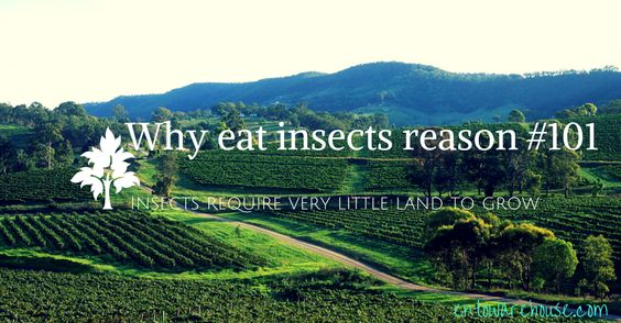 How can we make a lot of #protein on a little piece of land? #Insect #farming!  http://entowarehouse.com