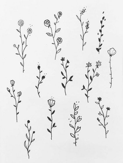 Plants drawing reference 31 Ideas drawing plants