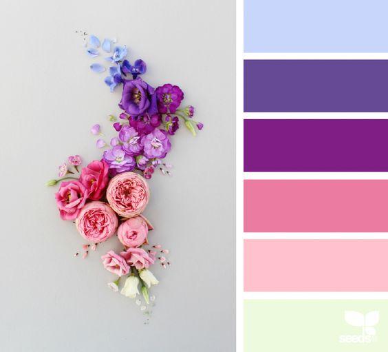 rózsaszín és lila virágok