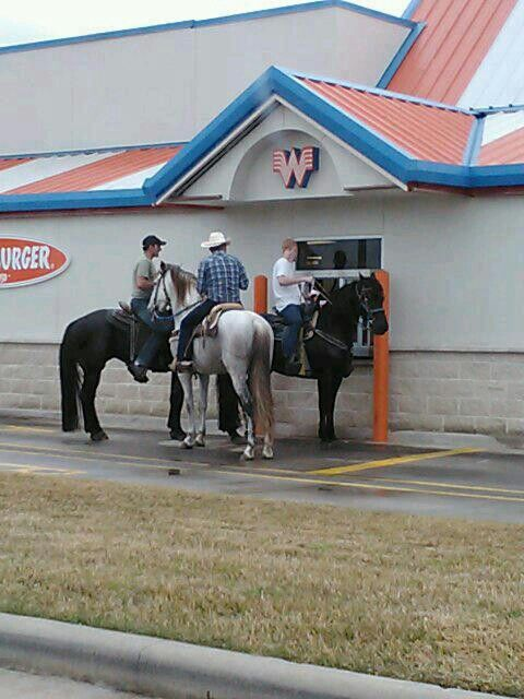 Two Texas staples -horses and Whataburger! No lie, y'all! Photo: John Moore, John Moore Services.