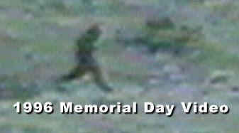 memorial day sasquatch video
