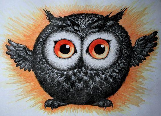 Owlet by Firesoul-LV on DeviantArt