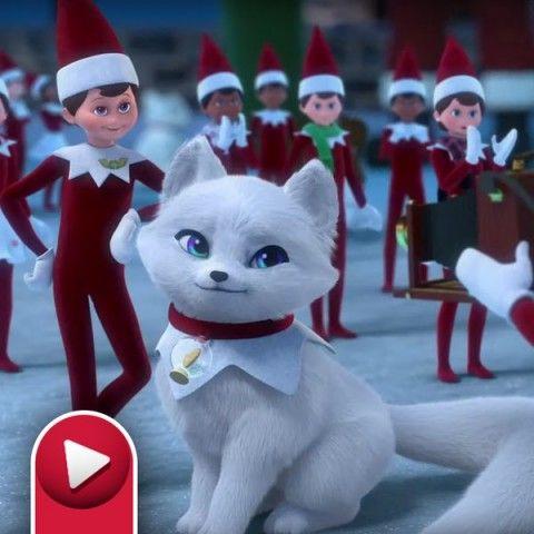 Fox Cubs Sing Along Santas North Pole The Elf On The Shelf Santa North Pole Elf Pets The Elf