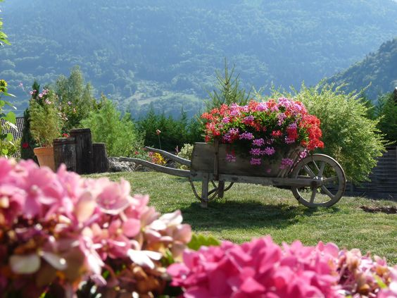brouette fleurie brouettes charrettes fleuries pinterest. Black Bedroom Furniture Sets. Home Design Ideas