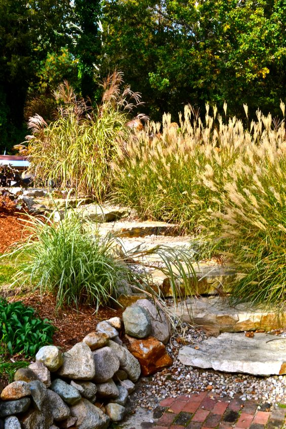 Easy landscaping ideas landscaping and the grass on pinterest for Less maintenance plants