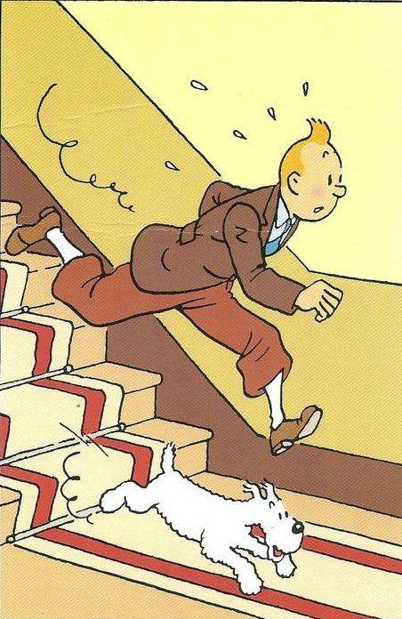 急いで階段を駆け降りるスノーウィとタンタンの画像