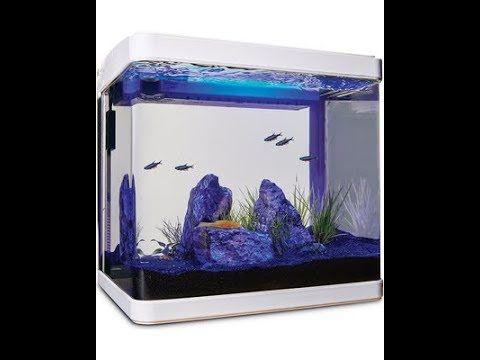 Imagitarium Freshwater Cube Aquarium Kit 5 2 Gallon Unboxing Youtube Aquarium Kit Fish Tank Design Aquarium