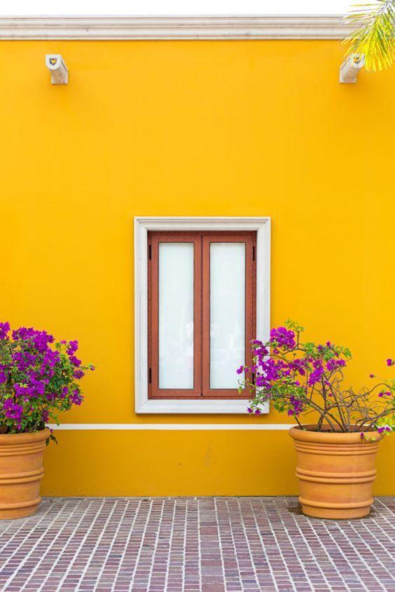 Ventanas con arte Pinturas de casas Colores para casas exteriores Colores para casas