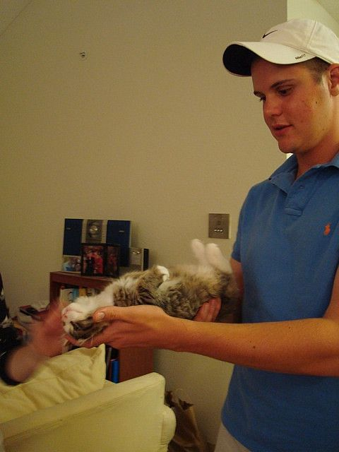 Ryan displays his kitty hypnosis technique.     Visit our website http://myselfdevelopmentplan.com