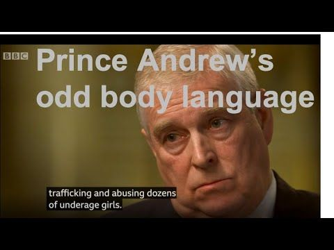 prince andrew epstein interview transcript