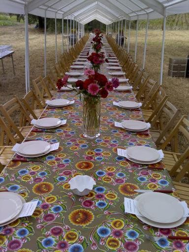 Table set for our Harvest Party  photo by lg sterling