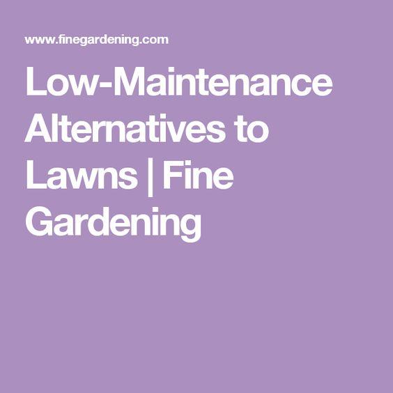 Low-Maintenance Alternatives to Lawns   Fine Gardening