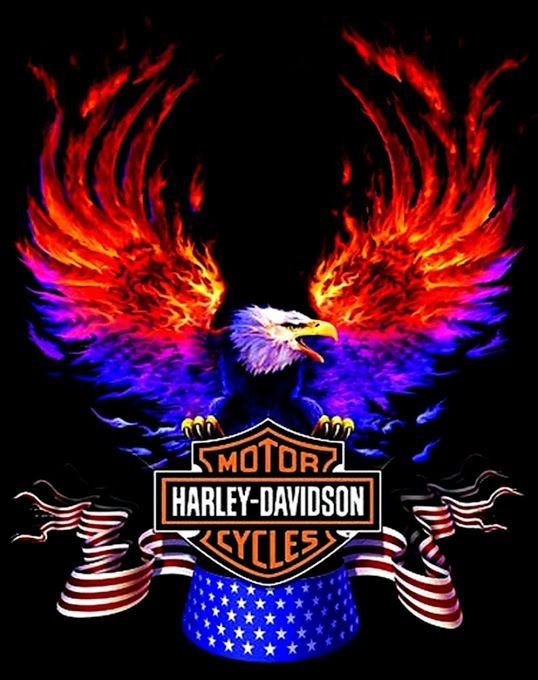 New Hd Wallpaper Gallery Harley Davidson Artwork Harley Davidson Art Harley Davidson Wallpaper