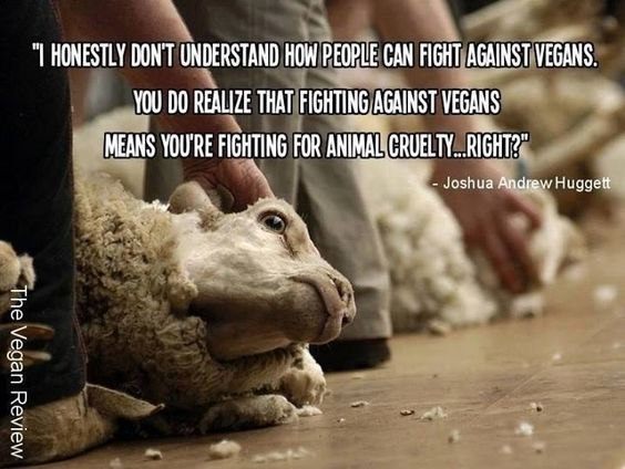 Why are so many people against vegetarians?
