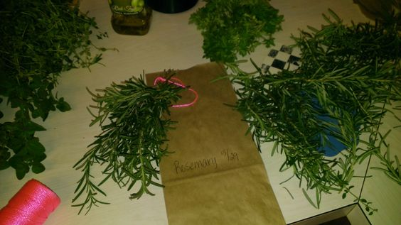 I'm attempting to dry my own herbs for the first time...we'll see how it goes! Here's the rosemary.