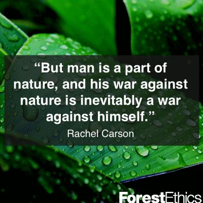 Nature Vs Manmade Quotes