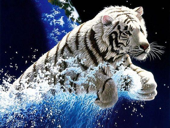 Screenshot Mobile9 Tiger Wallpaper Tiger Pictures Animal Wallpaper
