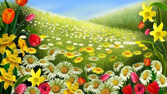 Imágenes-de-primavera-verano-otoño-invierno-1+(2).jpg 1,600×900 píxeles