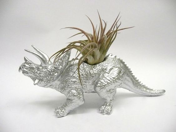 Silver Triceratops Dinosaur Planter with Air Plant by WhatJesseDid