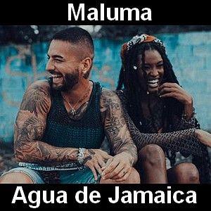 Maluma Agua De Jamaica En 2021 Agua De Jamaica Canciones Maluma