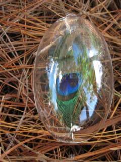 Peacock feather enclosed in glass ball.