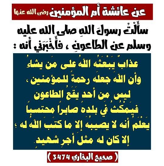 Pin By Hany Elbasha On أحاديث رسول الله Ahadith Periodic Table