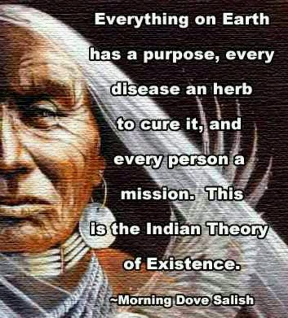 Everything on earth has a purpose, every disease an herb to cure it, and every person a mission.... - Mourning Dove, native american