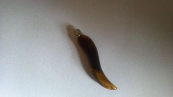 My Tiger's Eye Italian Horn Pendant