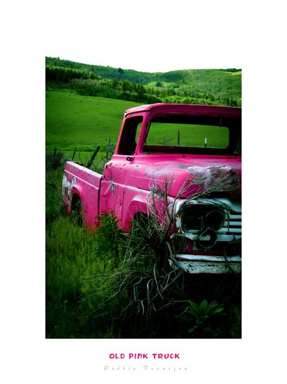 Pink in the Country