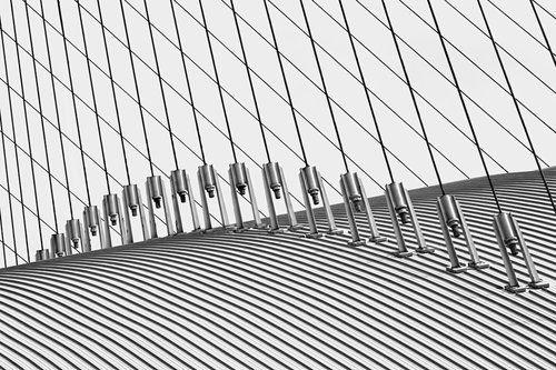 In the line by Vangelis Makris