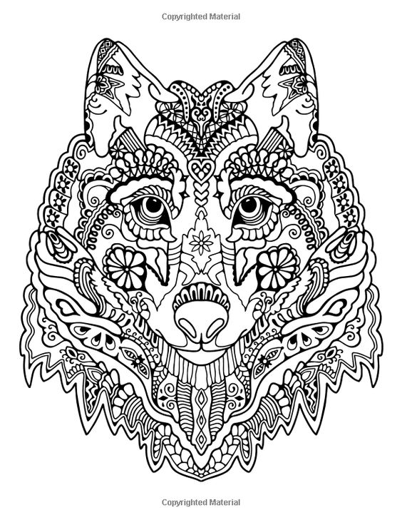 awesome animals a stress management coloring book for adults adult coloring books adult. Black Bedroom Furniture Sets. Home Design Ideas