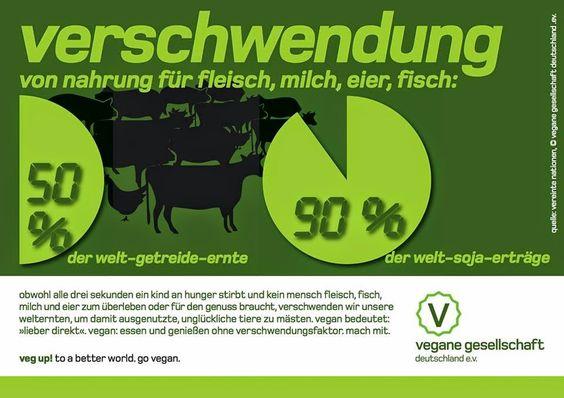Coach Lemmis Nu. We. Point: Verschwendung von Nahrung für Fleisch, Milch, Eier & Fischerzeugnisse