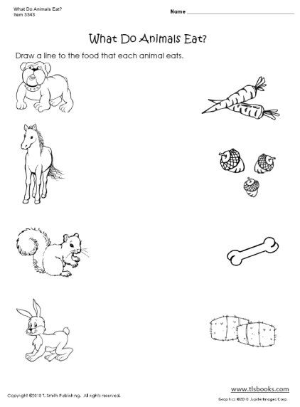 What Do Animals Eat? #1 | Science, Animals and Science worksheets