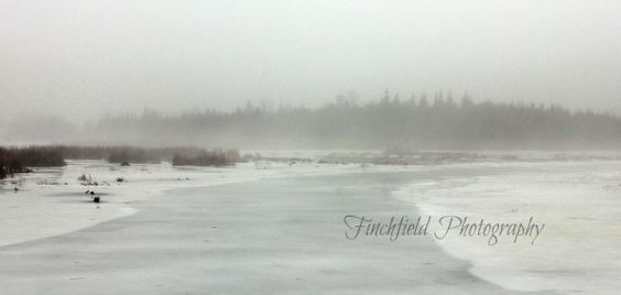 A January thaw...lovely mist over the ice covered lake.  What a beautiful view it was. A gorgeous day for a hike.