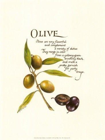 Nuttige eigenschappen van olijfolie