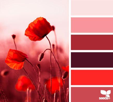 red tones - design seeds