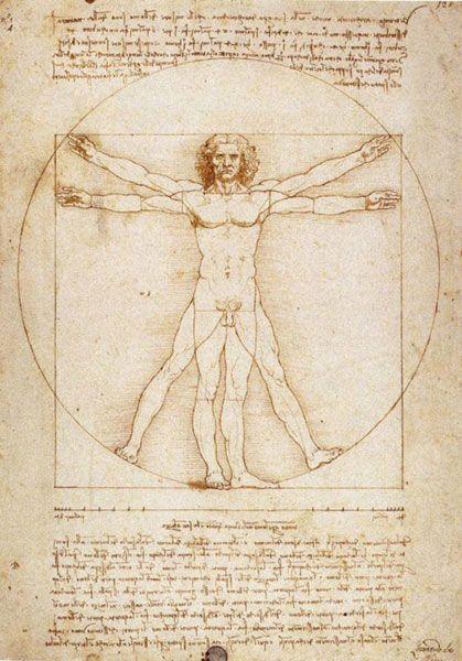 Léonard de Vinci - Homme de Vitruve ________________________________ Les canons énoncés dans la philosophie d'Aristote et de Platon amèneront la peinture italienne à une idéalisation de la beauté que ce soit dans la représentation des paysages, du portrait ou dans les proportions mathématiques du corps dont témoigne l'homme de Vitruve que Léonard de Vinci mis en image d'après les écrits de l'architecte romain.