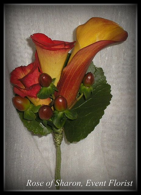 Boutonniere: Autumn miniature Calla Lily, Rose 'buds' & Hypericum Berry by Rose of Sharon Floral Designs, via Flickr