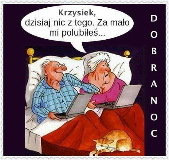 Pin by Gosia Bijak on Dobranoc   Humor, Funny memes, Funny