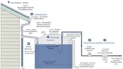 Image Result For Rainwater Filtration System Rain Water Collection System Rain Water Collection Rain Water Collection Diy