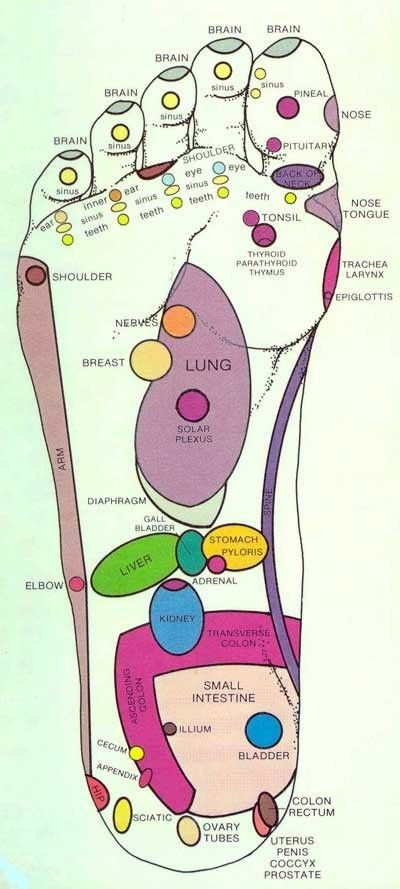 pressure points in the foot.   I've seen this before, and I've heard stories about people who helped relax aches, pain, or yucky feeling-ness by giving foot rubs. The body is so beautifully complex :)
