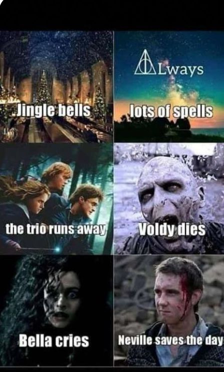 Funny Harry Potter Christmas Memes If Harry Potter House Quiz Based On Food Not Ha Harry Potter Memes Hilarious Harry Potter House Quiz Harry Potter Characters