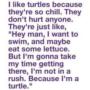 Turtles have the right idea.