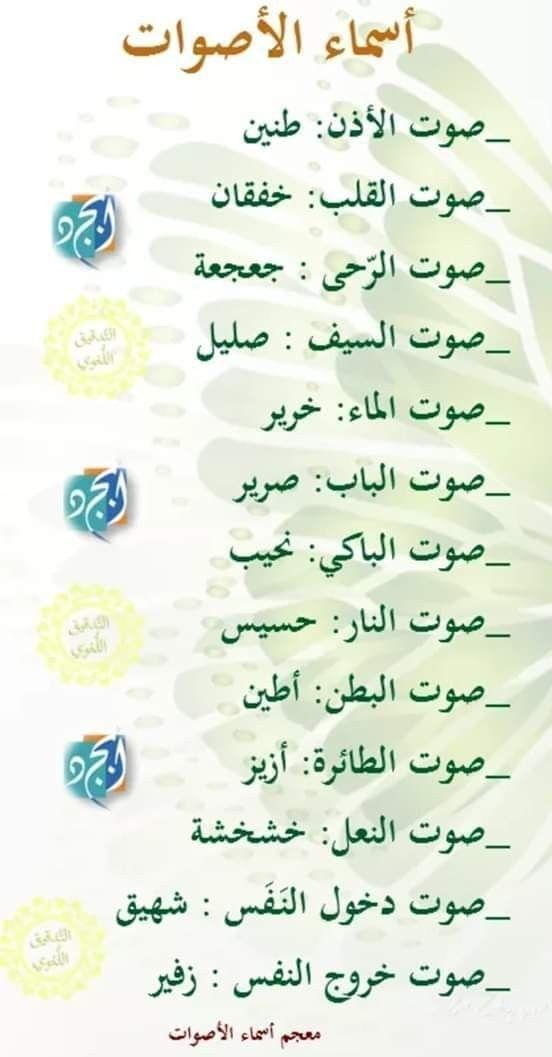 Pin By Ryurei Heka On لغة عربية Learning Arabic Beautiful Arabic Words Learn English Words